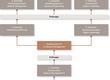 Grafik der den Aufbau des Executive MBA Studiums zeigt